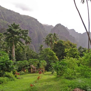 Daniel's home at Daniel's Bay, Nuku Hiva, site of the TV reality show Survivor Marquesas, which was not as remote from civilization as the show's producers might wish viewers to believe.