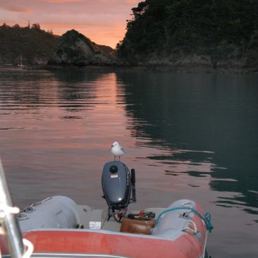 Sunset at Whangaroa Harbor anchorage