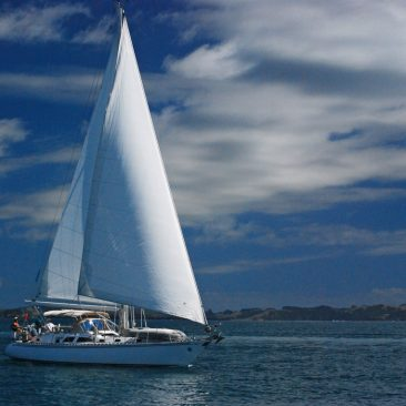 Sailing with yacht Seeker in the Bay of Islands