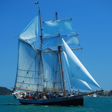 Tall Ship in the annual race off Russell